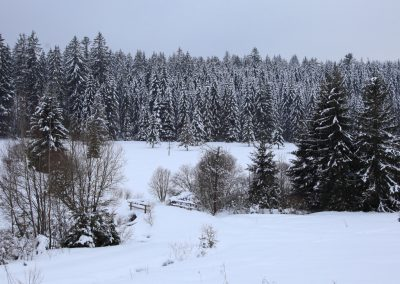 MV_BayWa_Schneelandschaft