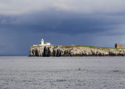 MV_Farne_Islands_003