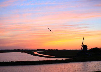 MV_Texel_SU