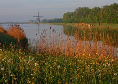 MV_Texel_Windmühle