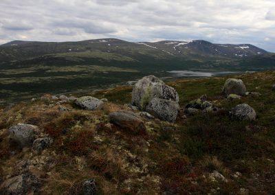Dovrefjell_0014